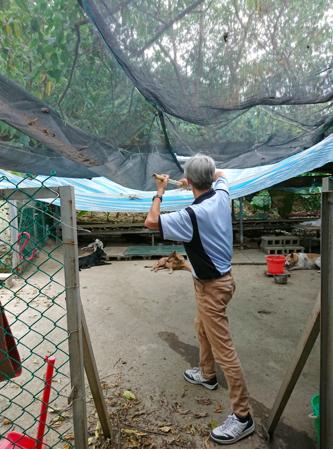 2017年8月6日,志工隊到愛媽狗場協助整理環境,郭武昌正在清除雨棚上的落葉。(照片:志工隊提供)